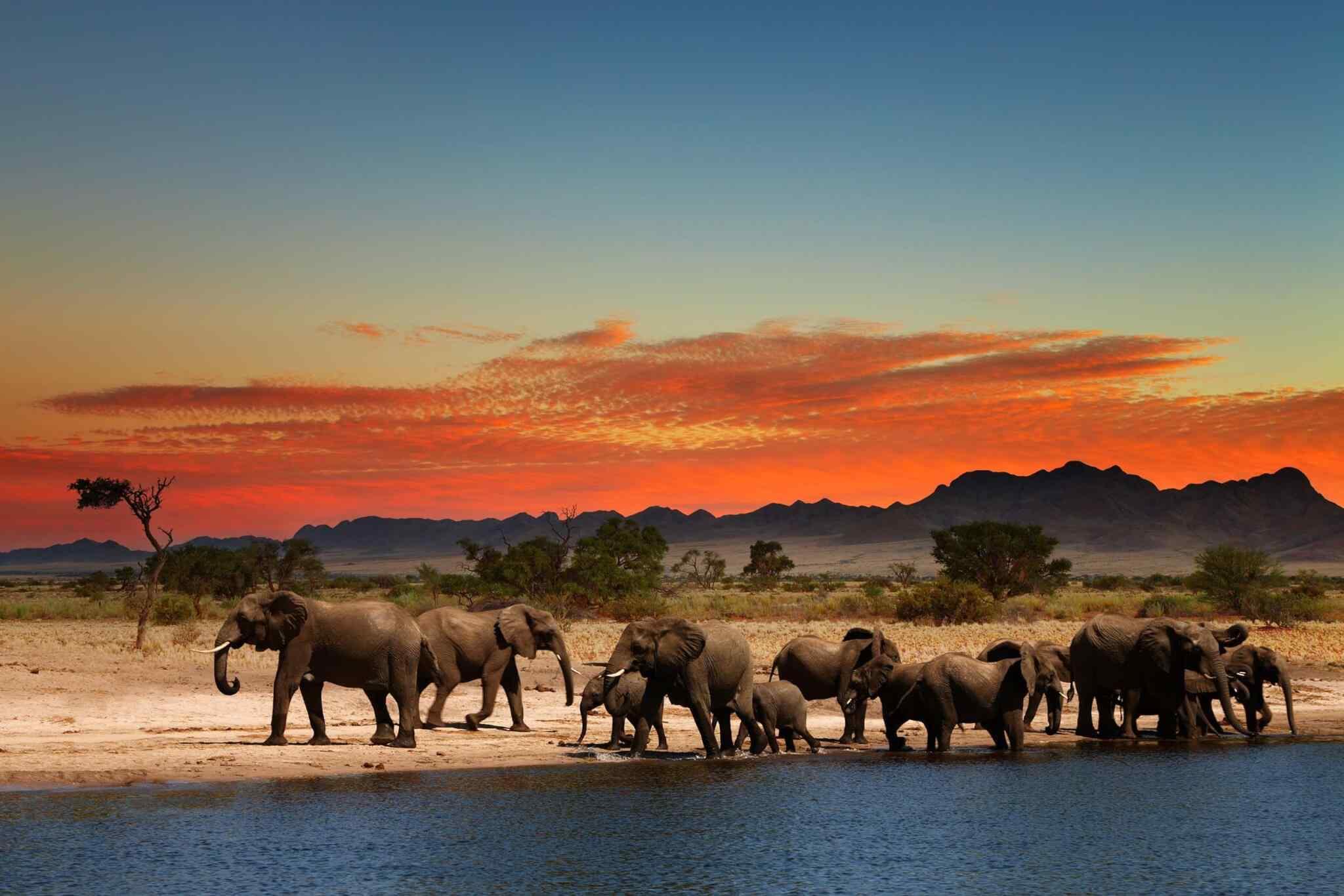 Tour Africa TGT